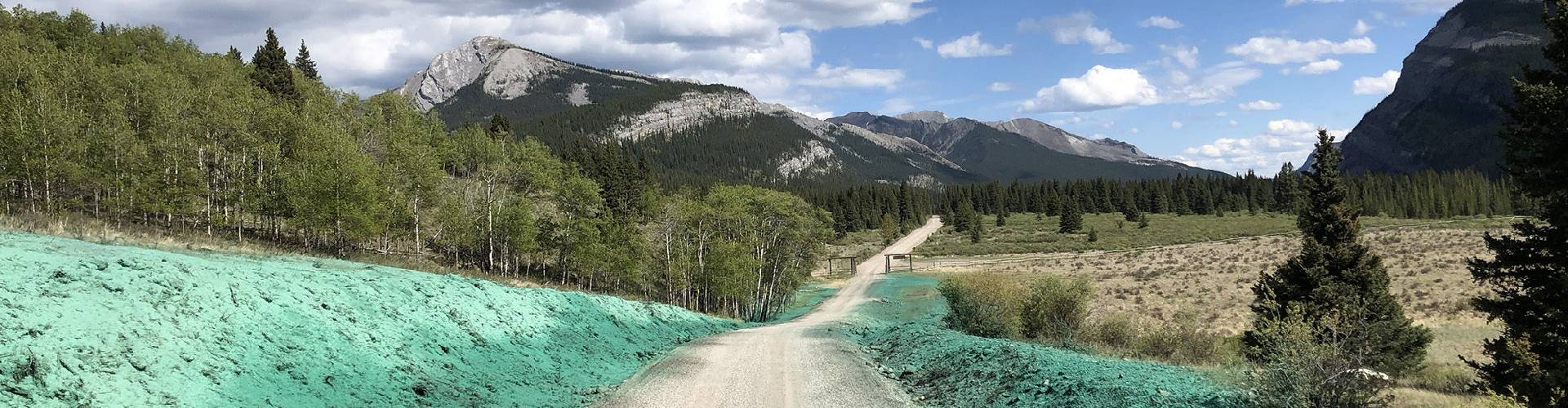 landscape with hydropseeding to prevent erosion