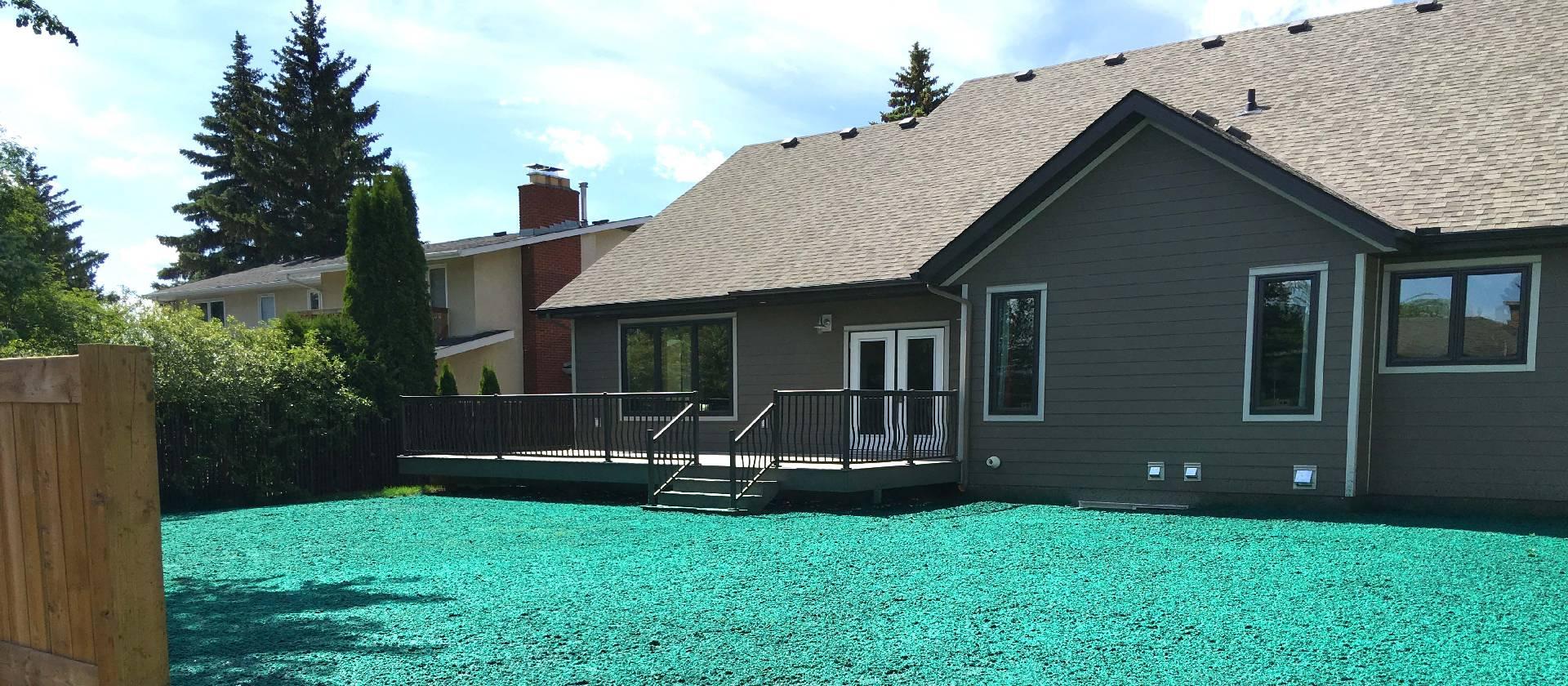 residential hydroseeding on lawn